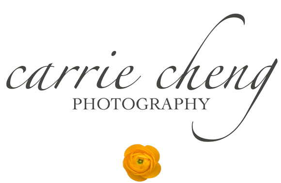 Carrie Cheng Photography.   Naperville family photographer.  Singapore family photographer.  Located in the East Coast of Singapore.